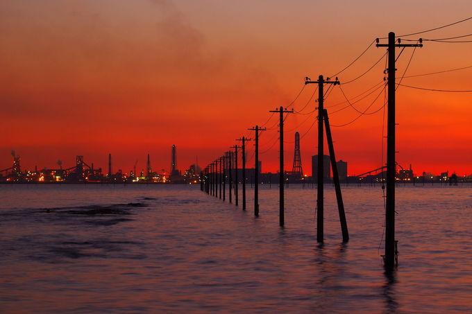 木更津に来たら一度は見たい!「海中電柱」が魅せる絶景