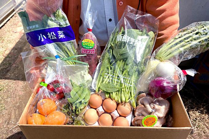 旬の野菜を安心お届け!今話題の「道の駅農産物ドライブスルー」