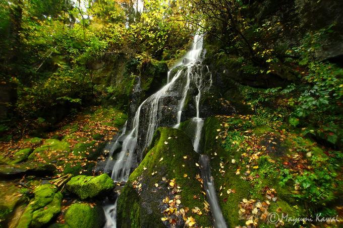 山彦の滝の最大の見どころは「裏見の滝」