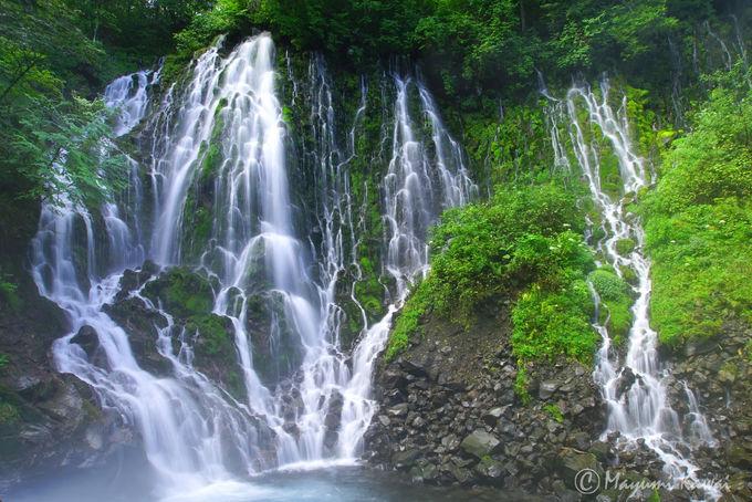 日本最後の秘境!飛騨・乗鞍山麓五色ヶ原はもののけの森