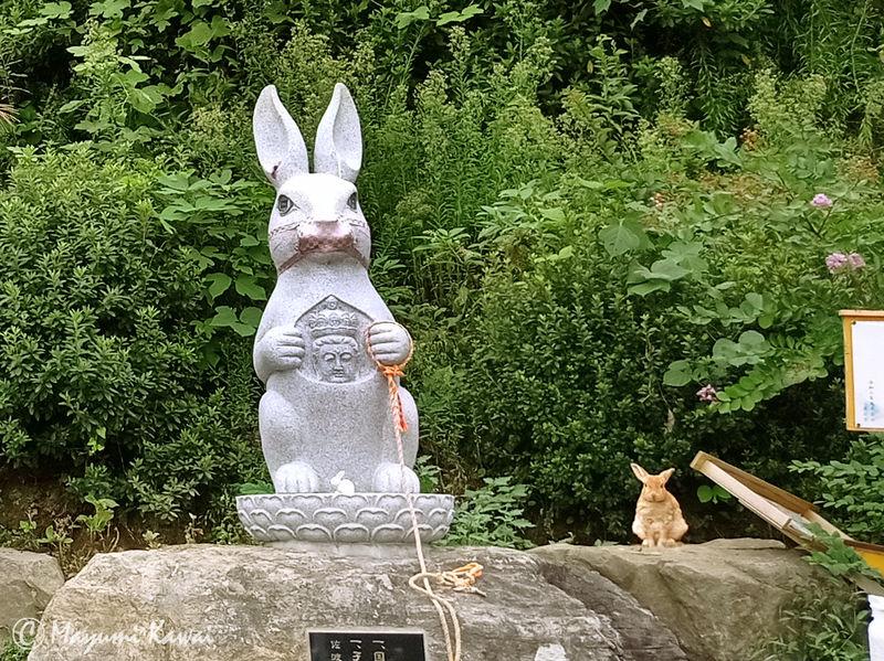 ウサギ観音で霊験あらたか?佐渡の長谷寺はキュートなウサギ寺