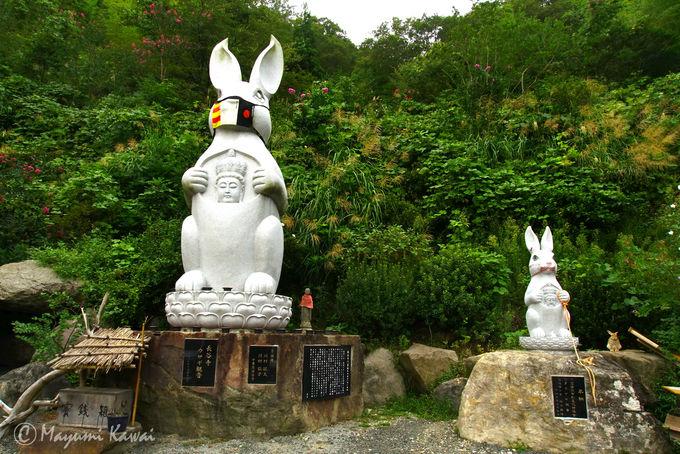 草取りウサギと親子ウサギ観音!長谷寺はキュートなウサギ寺