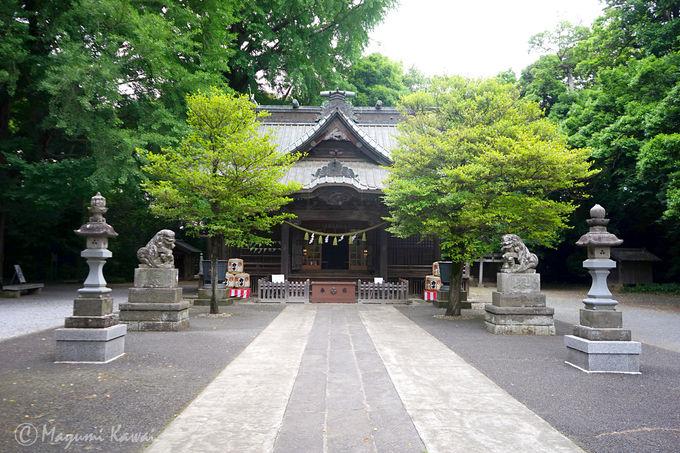 1300年以上の歴史有する由緒正しき加須の古社・玉敷神社