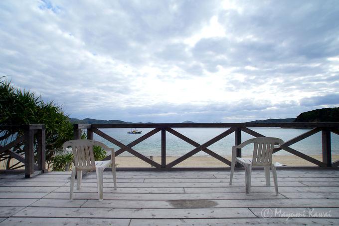 国内5例目!世界自然遺産登録を迎える奄美大島