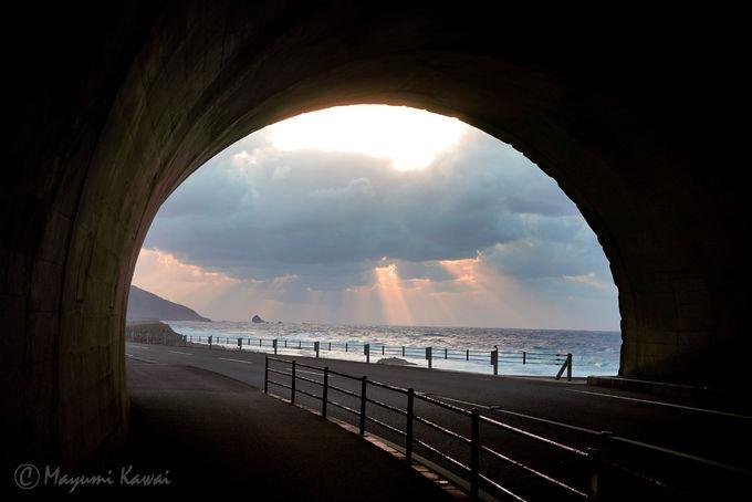 沈む夕日が龍の眼に!年に2度の奇跡・かがんばなトンネル