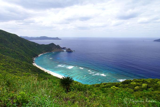 加計呂麻島の絶景スポット!タカテルポイント