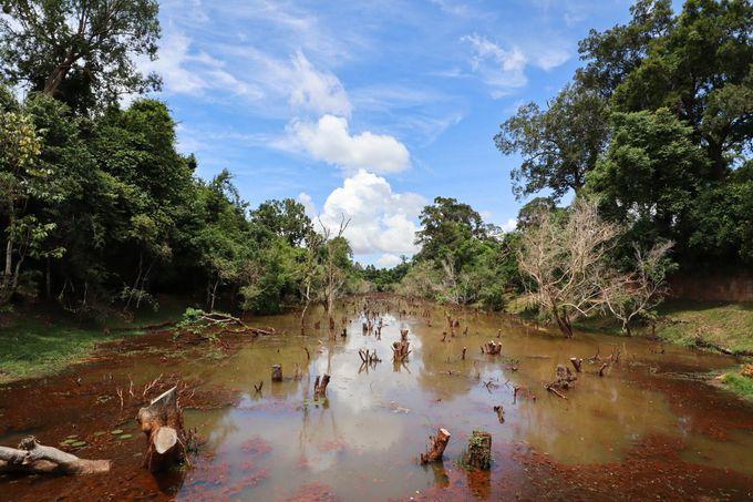 4日間のカンボジア旅行全体の予算は?