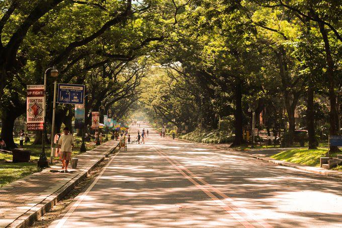 フィリピン旅行の高い時期、低い時期は?