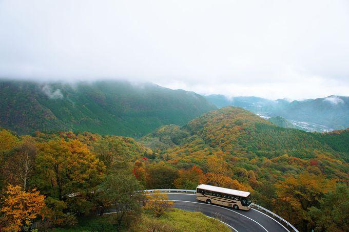 4. [当日の楽しみ方]バスからの景色を楽しもう!