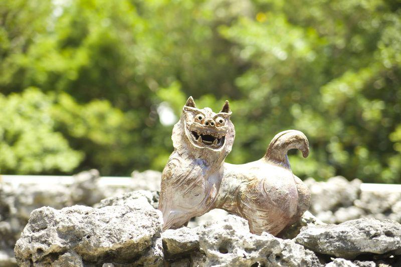 沖縄旅行はツアーがおすすめ! 安い時期や費用、気候