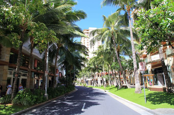ハワイツアーはホテルの立地でも料金が変わるって本当?