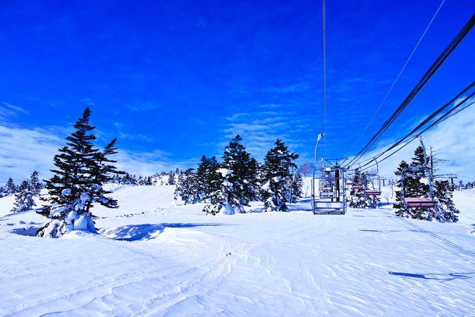 カンタン!日帰りで行くスキーバスツアーを検索してみよう