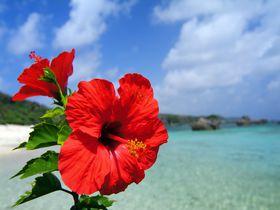 いつがお得?沖縄旅行が安いのはこの時期!