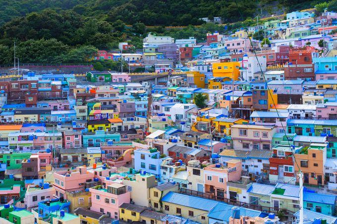 日本各地と韓国のクルーズツアー