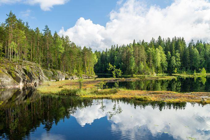 フィンランドで体験したいこと