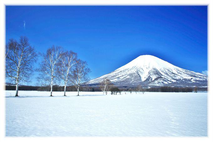 ウィンターシーズンの北海道はふっこう割で行こう!