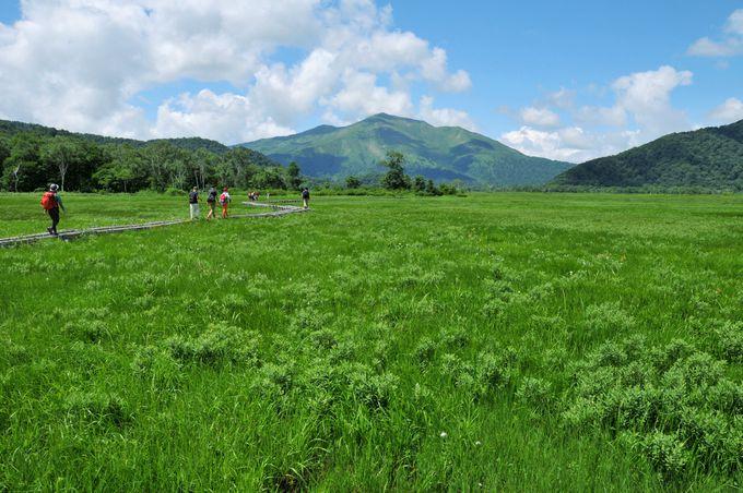 【ハイキング】涼やかな絶景を満喫しよう