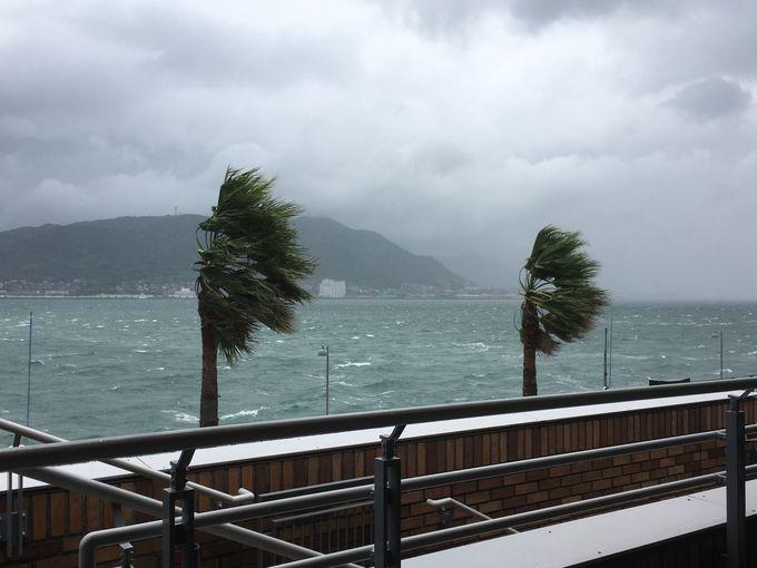 現地で台風が直撃したら……?