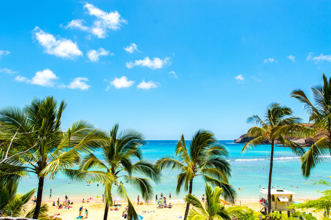 ハワイ旅行の定番は4泊6日!おすすめの過ごし方