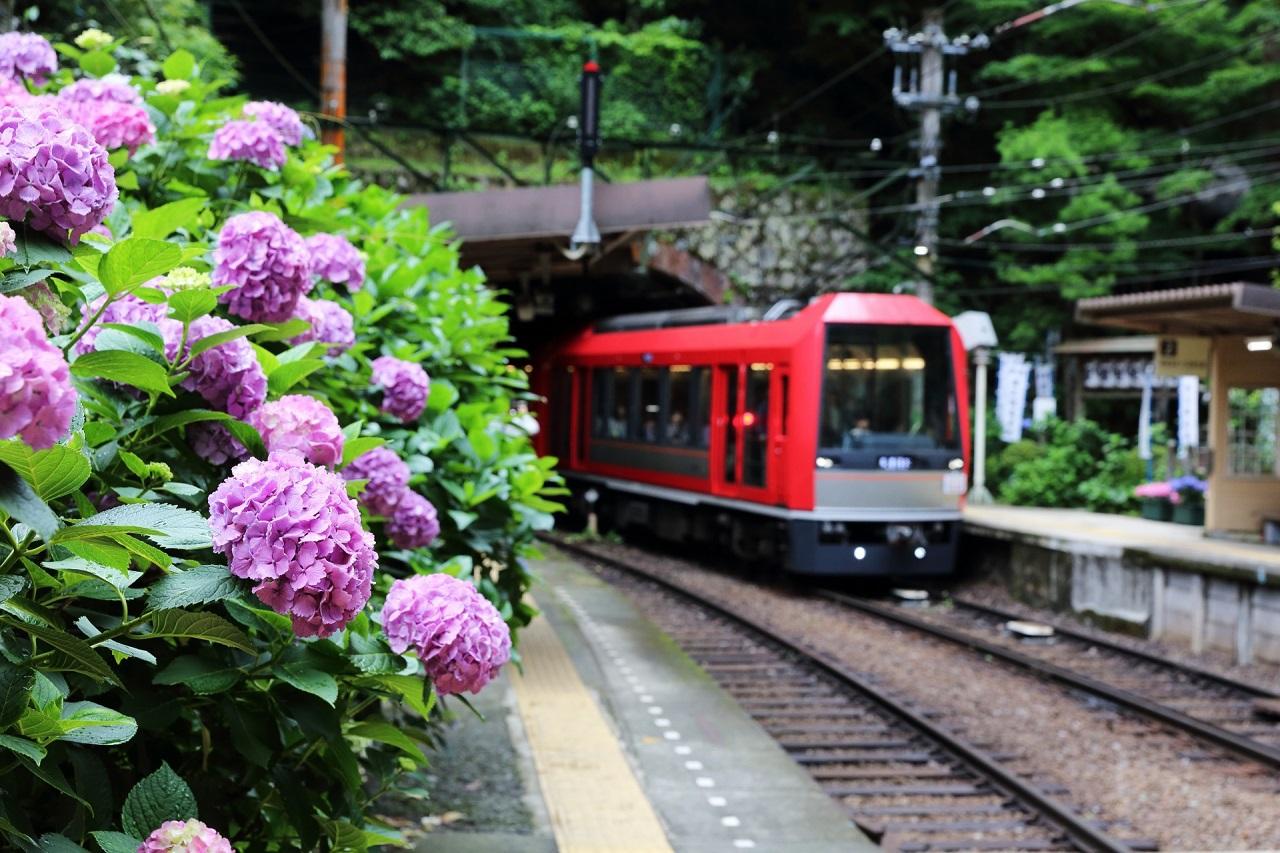 箱根でどこに泊まる?宿の選び方のコツ