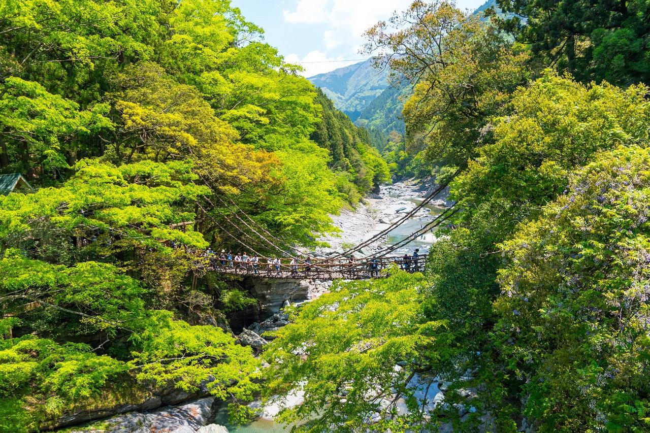 【徳島】鳴門の渦潮、大歩危峡を1泊2日で!