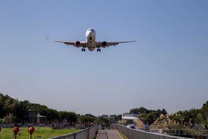 航空会社、旅行会社によるPCR検査・抗原検査サービスとは?