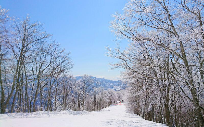 これが節約になる!日帰りスキー・スノボに格安で行く5つの方法