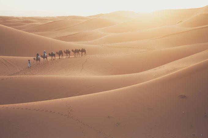 モロッコのインターネット事情 サハラ砂漠でもネットは使える?
