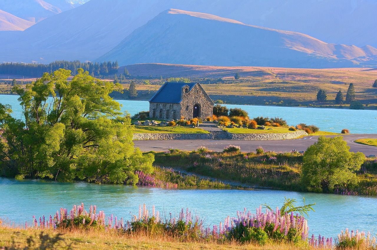 元在住者が教えるニュージーランドツアーの選び方 〜ポイントを詳しく解説〜