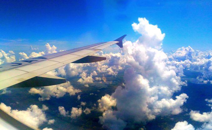 格安航空券でも座席指定が可能な場合はある?