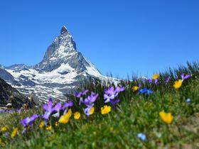 1週間のスイス旅行にかかる予算を徹底調査!滞在費を詳しく解説