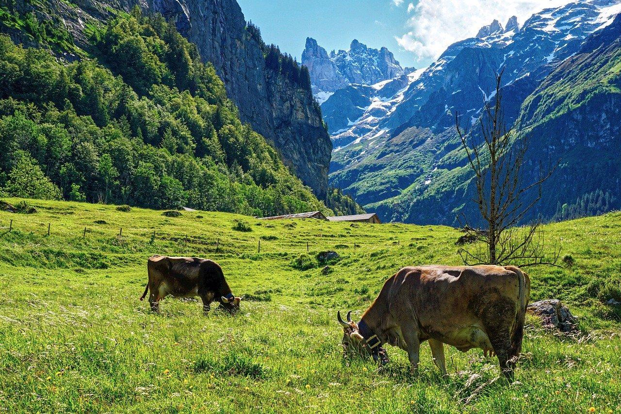 スイスの気候について