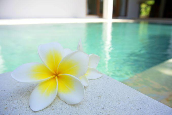 新婚旅行でバリ島へ行くなら何泊がいい?