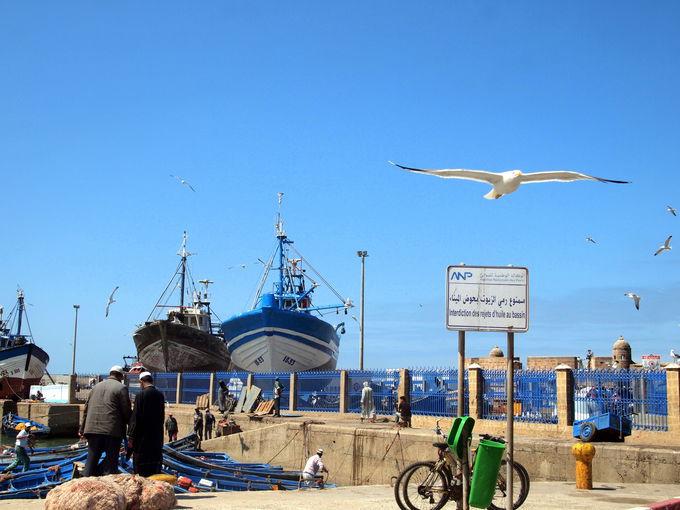 海辺の港町に癒される〜エッサウィラ〜