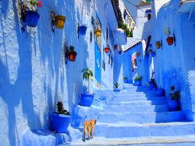 魅惑のモロッコ!どこに泊まる?目的別都市とホテルの選び方を紹介