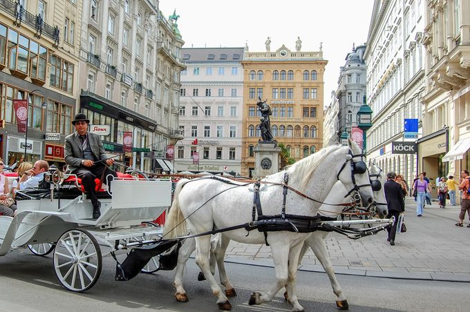 プラハ+ウィーンを観光するなら6泊8日