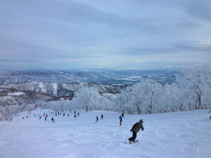 スキー・スノーボードツアーの種類