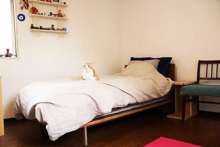 1.猫ちゃんがいる一軒家、京セラドーム大阪まで徒歩3分