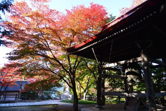 四季折々の景色に癒される「天上寺」