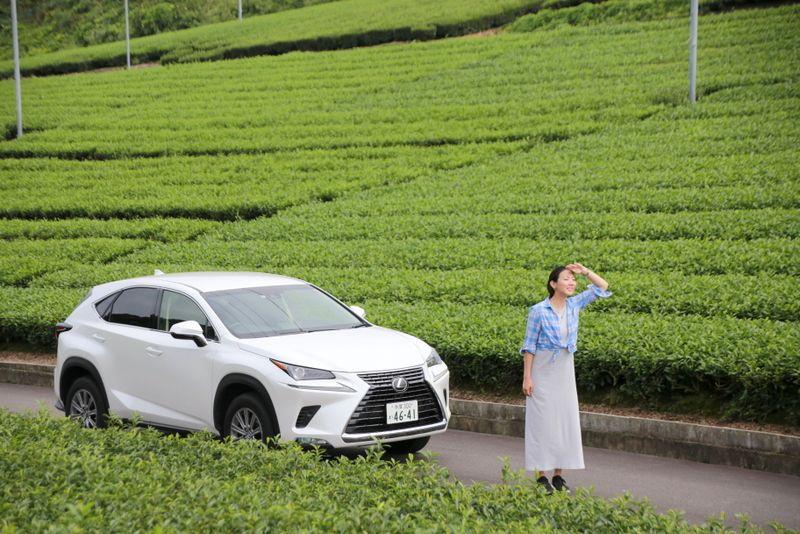 超お得に静岡を満喫!静岡県内の高速道路が定額で乗り放題