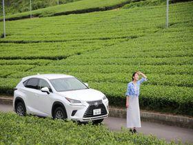 浜松&静岡西部ドライブ!高速乗り放題でお得になるモデルコースはコレ