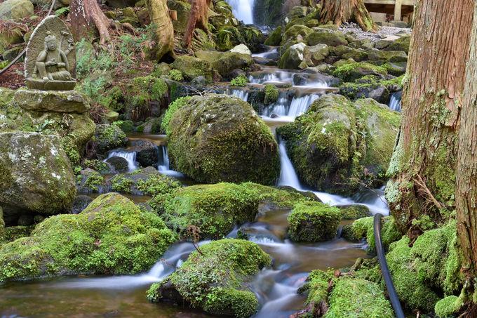 鳥海山の伏流水が湧く「胴腹の滝」は神秘のパワースポット