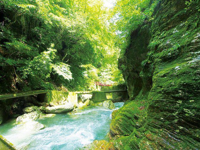 渓谷美が美しい観光スポット「中津渓谷」