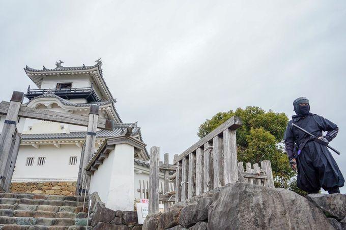 1日目午前:戦国の舞台 白壁の「掛川城」