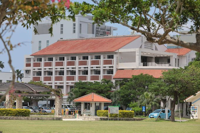 1.沖縄国際ユースホステル
