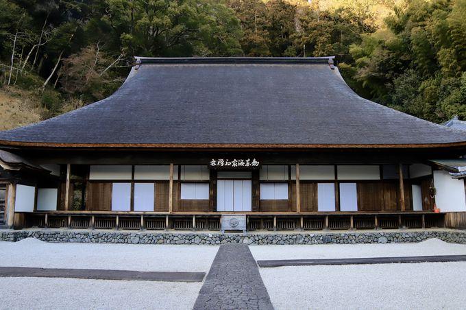 1日目午後:臨済寺で過ごす静かなひととき