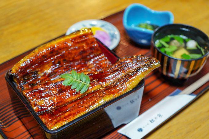 1日目お昼:浜名湖でおいしいうなぎを食べる!