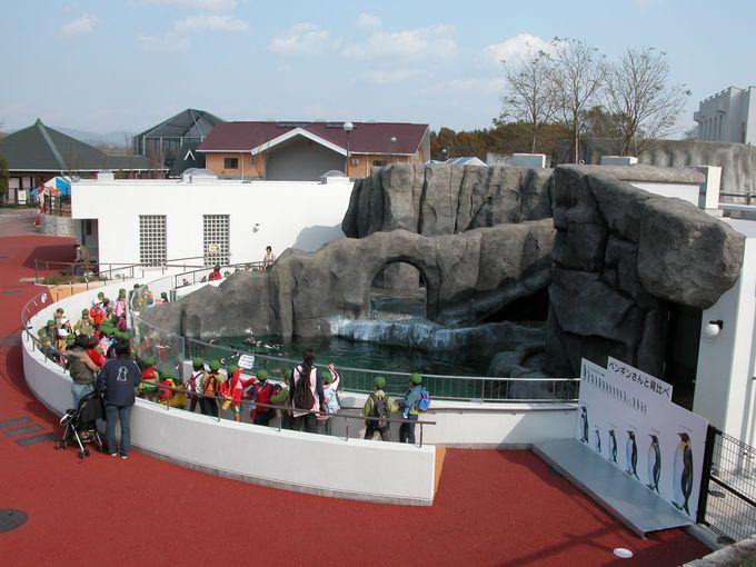 動物とふれあえるイベントが充実「福山市立動物園」