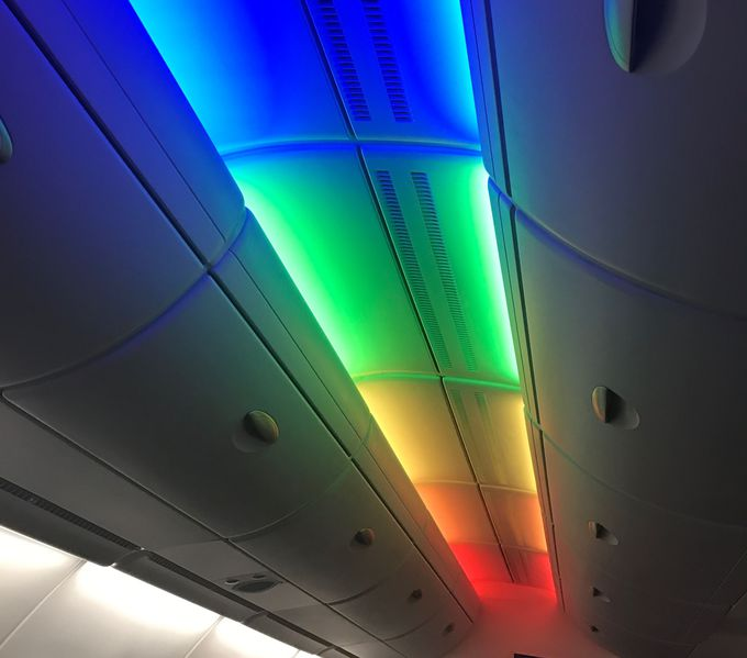 3.機内にいる間もハワイを感じさせるサービス