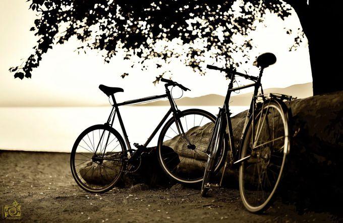 9. サイクリングツアー